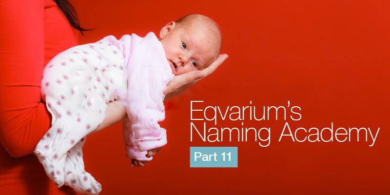 name academy 11