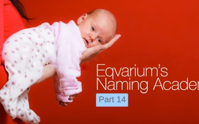 Eqvarium's Naming Academy Part 14